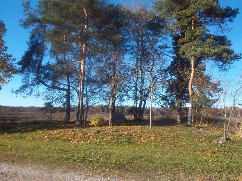 Kivikalme reg nr 12023 vaade lõunast. Foto: K. Klandorf, 14.10.2013.