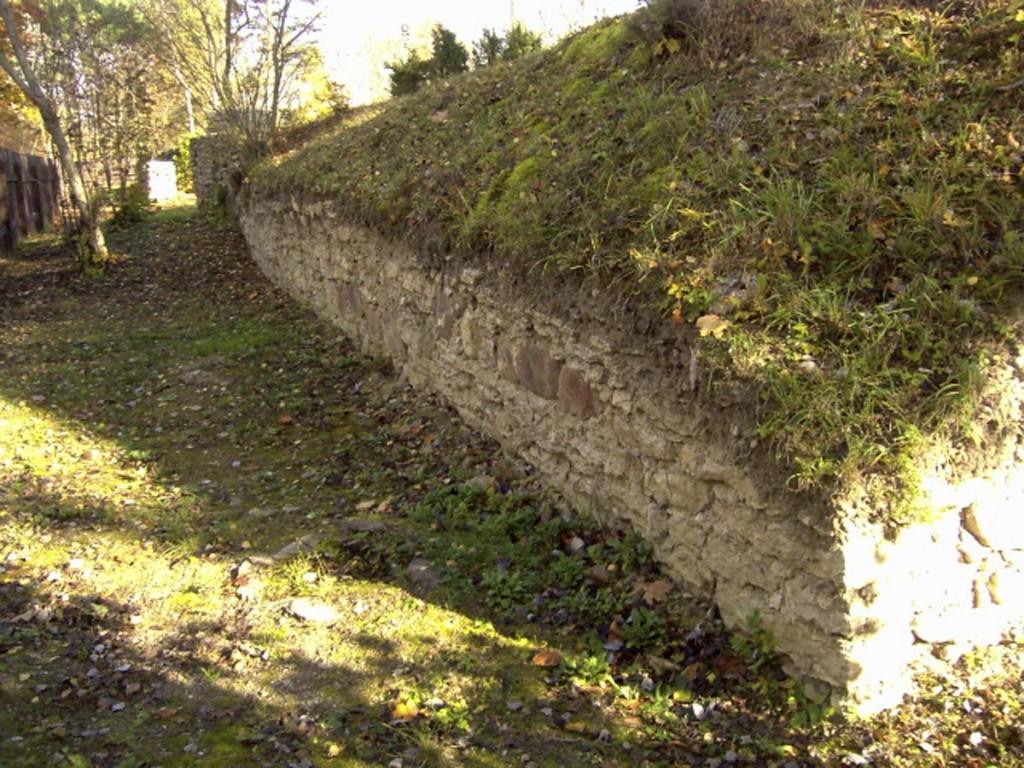 Kassari mõisa peahoone varemed  Autor D.Lukas