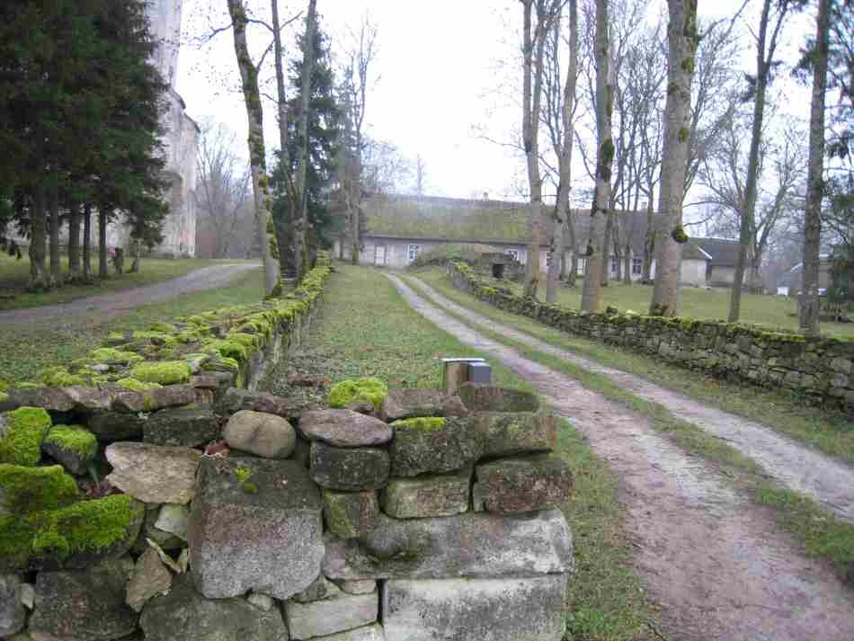 Piirdeaiad. Foto: R. Peirumaa. Kuupäev  22.11.2007