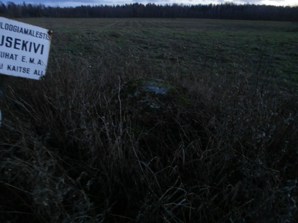 Teine kivi, pildistatud põhja poolt. 08.11.13. Armin Rudi