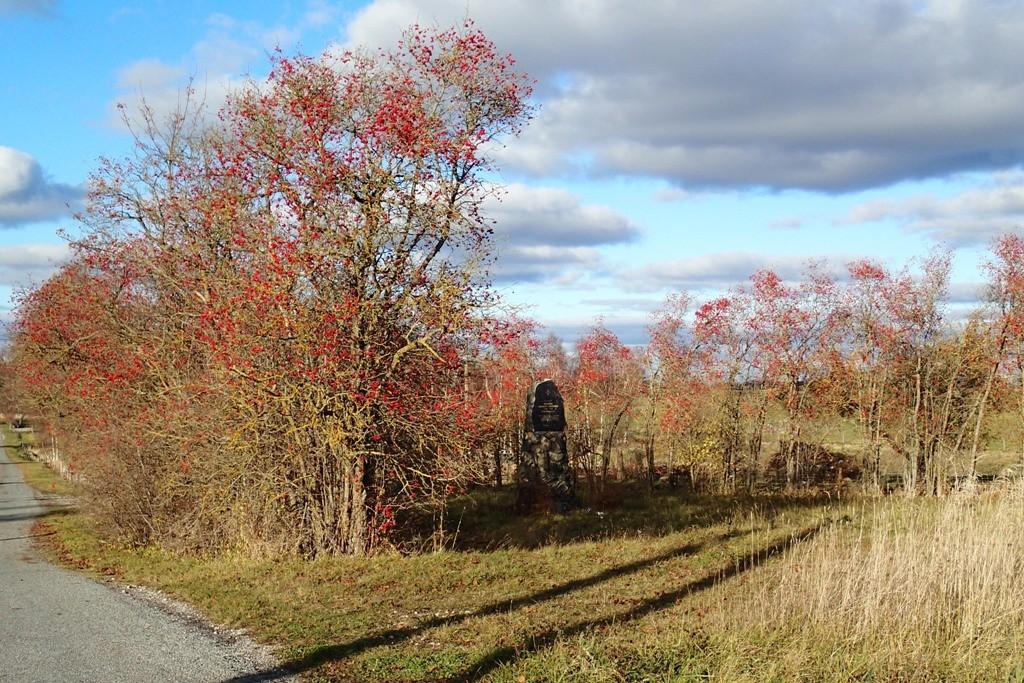 Vabadussõja Rägavere lahingu mälestussammas, reg. nr 27128. Vaade edelast. Foto: M.Abel, kp 21.10.13