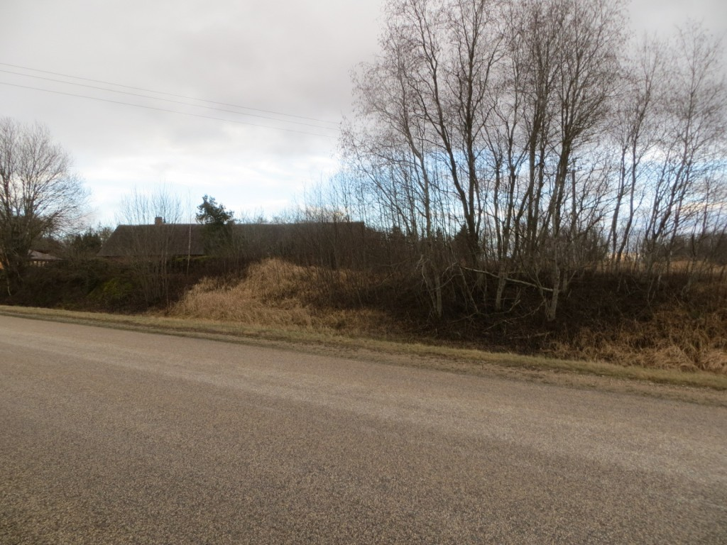Kalmistu reg nr 13126. Foto: Ingmar Noorlaid, 28.11.2013.