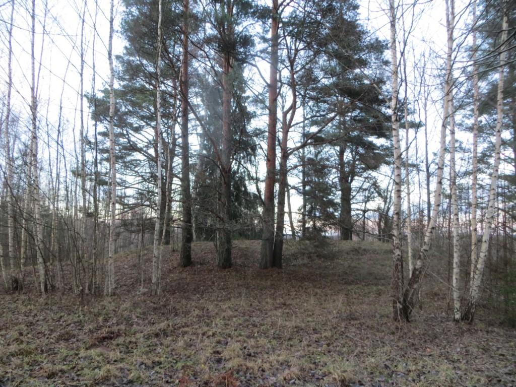 """Kalmistu """"Juudamägi"""" reg nr 13121. Foto: Ingmar Noorlaid, 28.11.2013."""