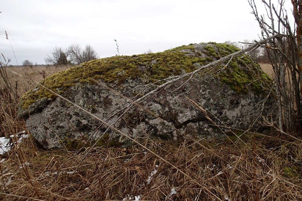 Kultusekivi, reg nr 10552. Lohukivi põhjast. Foto: M. Abel, 03.12.2013.