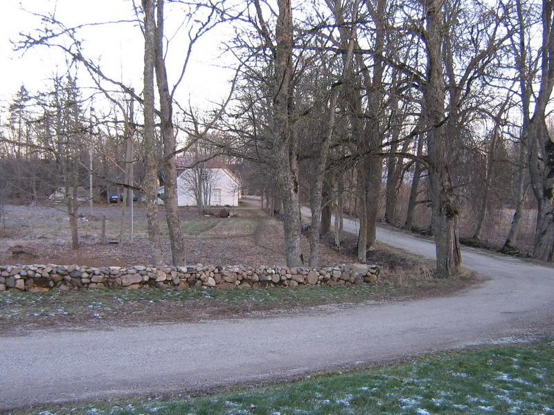Altja tee äärne allee -Autor Anne Kaldam  Kuupäev  04.01.2008