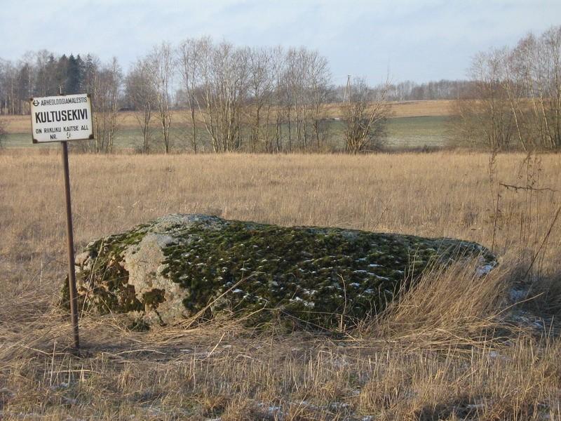 Kultusekivi reg nr 10268. Foto: I. Raudvassar, 03.01.2008.