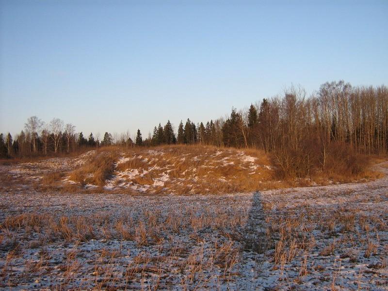 "Kalmistu ""Surnumägi"", reg nr 10277. Foto: I. Raudvassar, 03.01.2008."