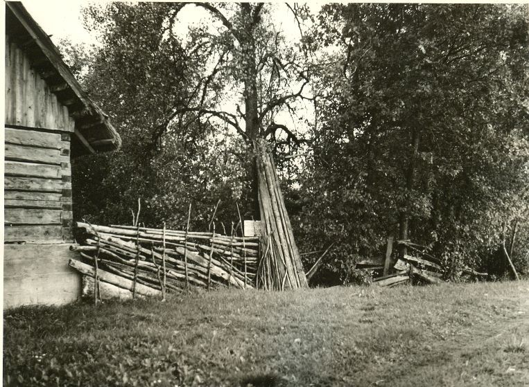 Kaks ohvriallikat. Foto: A. Sillasoo, 01.08.1975.