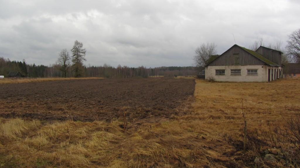 Asulakoht reg nr 13172. Foto: Ingmar Noorlaid, 09.01.2014.