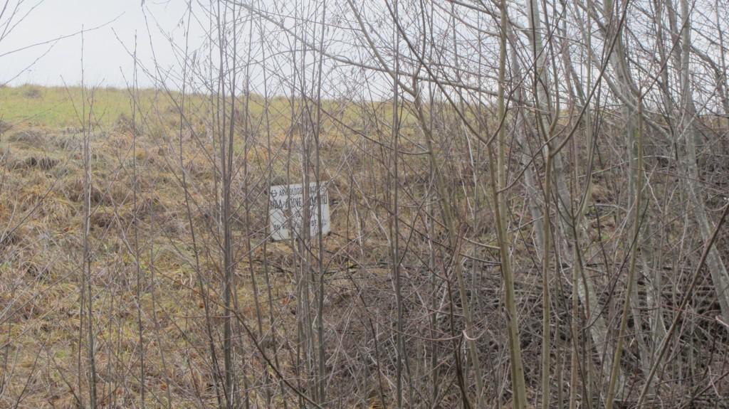 Kalmistu reg nr 13173. Foto: Ingmar Noorlaid, 09.01.2014.