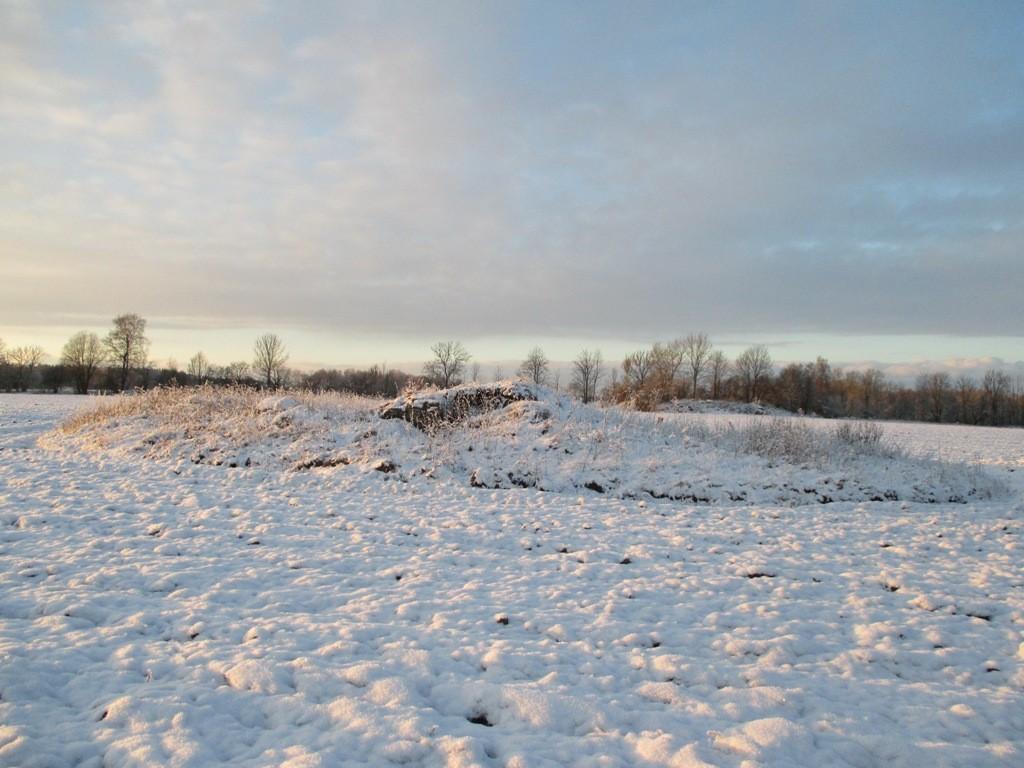"""Kalmistu """"Kalmumägi"""" Raela külas, vaade kagust. Foto: K. Klandorf, 16.01.2014."""
