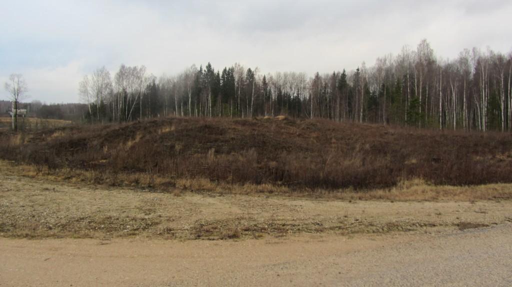 "Kalmistu ""Pringi kabelimägi"" reg nr 13175. Foto: Ingmar Noorlaid, 09.01.2014."