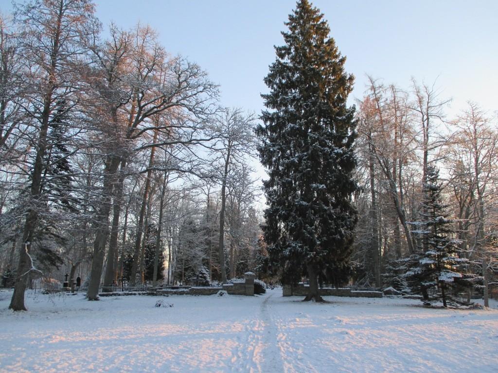 Vigala kalmistu vaade läänest. Foto K. Klandorf 21.01.2014.