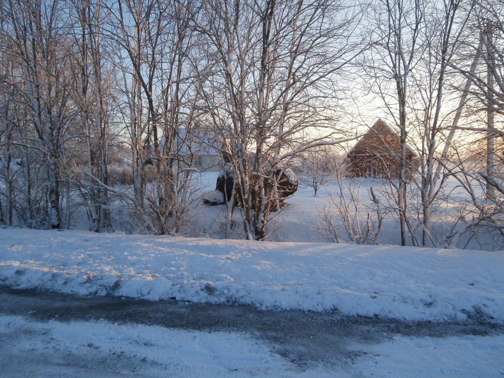 Vaade kultusekivile Jägala teelt, põhja poolt. 14.01.2014. A. Rudi