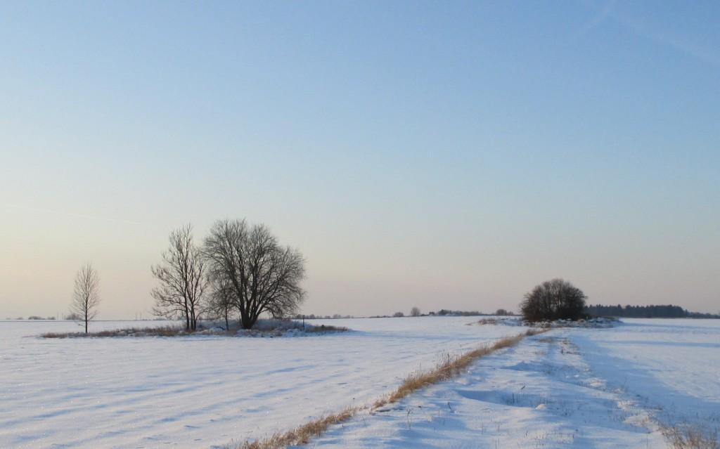 Käbiküla kivikalmed, vaade kirdest. Pildil vasakpoolne kivikalme reg nr 11946. Foto: K. Klandorf, 06.02.2014.