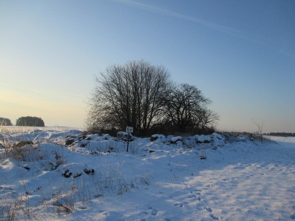 Kivikalme reg nr 11949 Käbikülas, vaade põhjasuunast. Foto: K. Klandorf, 06.02.2014.