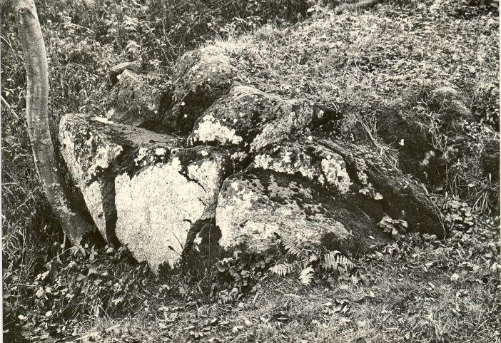 Jaanikivi. Foto: M. Pakler, 21.10.1987.
