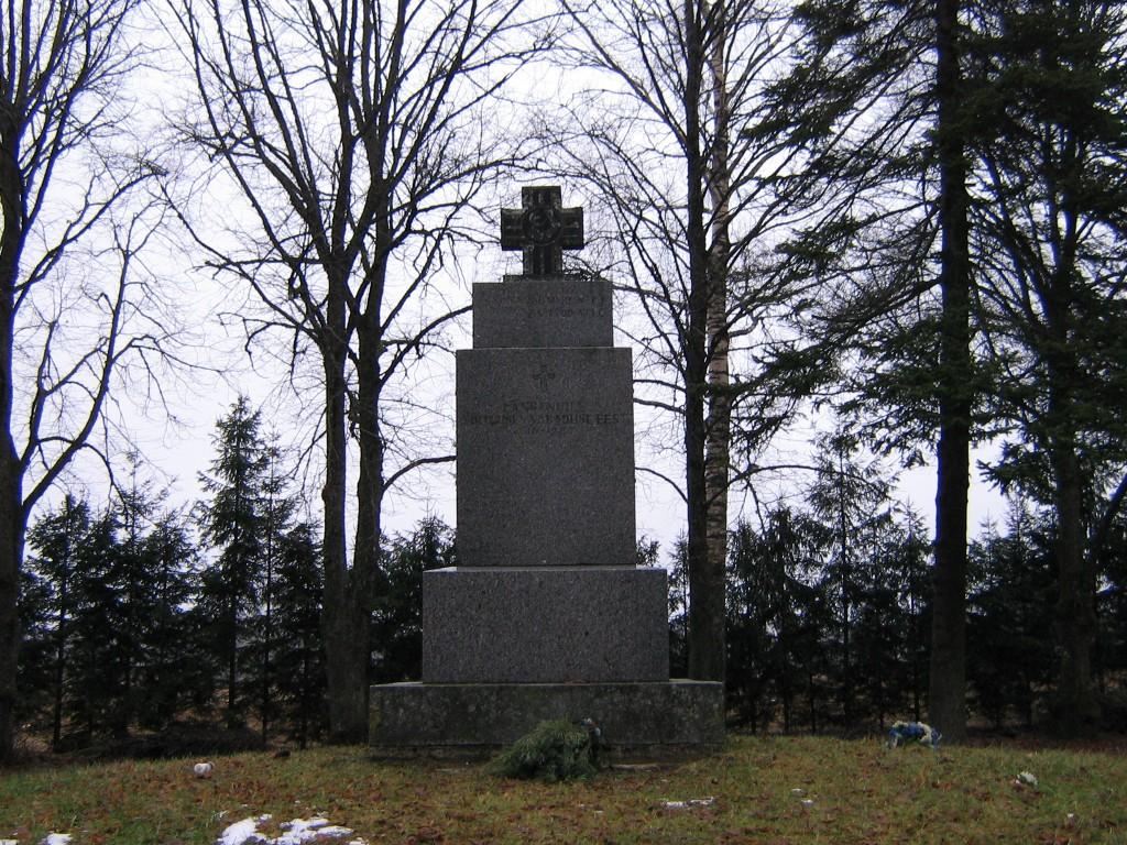 Vabadussõja mälestussammas Autor A.Kivi  Kuupäev  28.01.2008