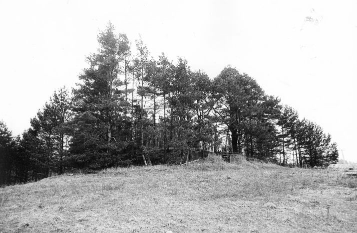 Maa-alune kalmistu - lõuna-kagust. Foto: M. Pakler, 06.05.1981.
