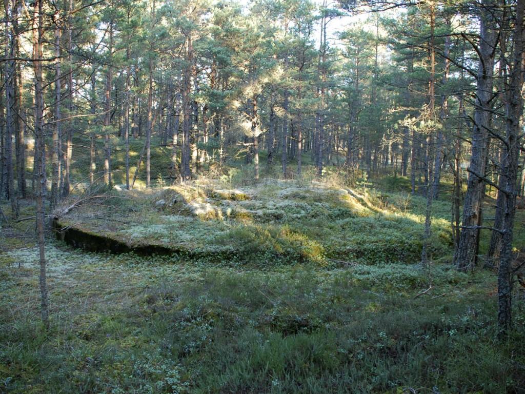 Esimese Maailmasõja patarei nr. 39 kahurialus 2  Autor M.Mõniste  Kuupäev  20.01.2008