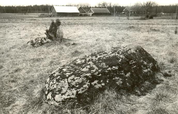 Kultusekivi - idast. Foto: E. Väljal, 01.04.1991.
