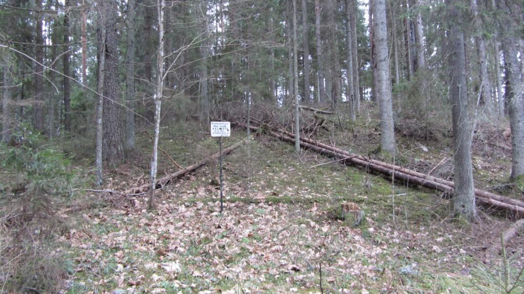 "Kalmistu ""Kirikuase"" reg nr 13088. Foto: Ingmar Noorlaid, 19.02.2014."