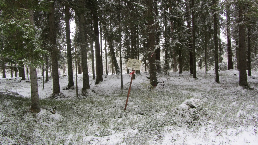 Kääbas reg nr 13746. Foto: Ingmar Noorlaid, 21.02.2014.