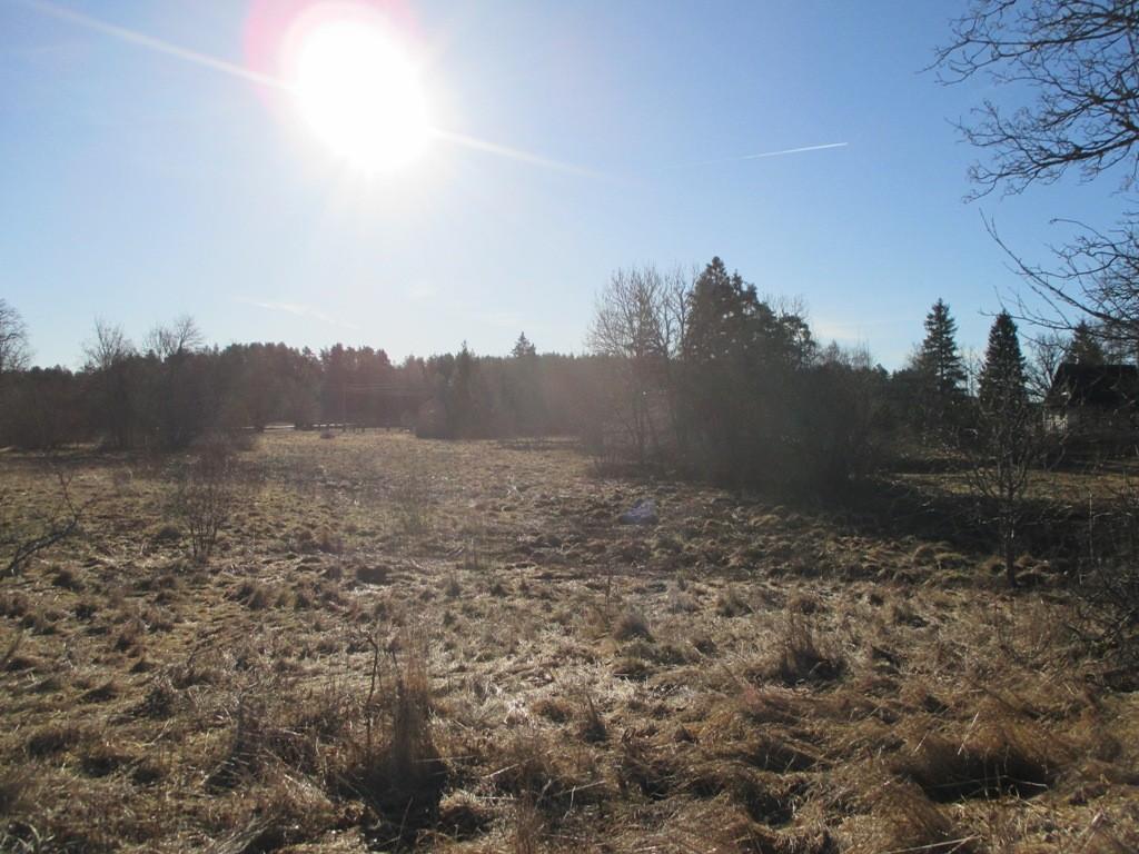 Asulakoht reg nr 12095 Põlli külas, vaade loodest Mikuri talu suunas. Foto: K. Klandorf, 11.03.2014.