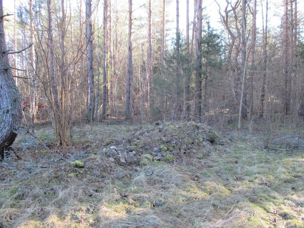 Muistsed põllud reg nr 12097 Põlli külas. Foto: K. Klandorf, 11.03.2014.
