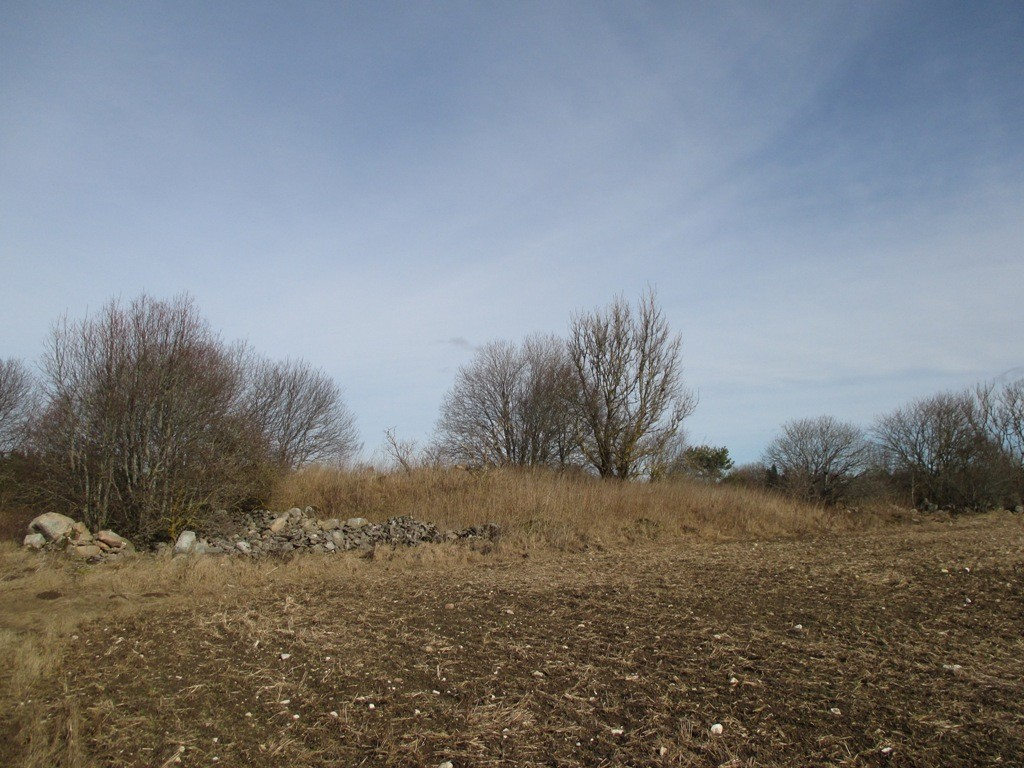 """Kalmistu """"Kalmumägi"""" reg nr 12154, vaade edelast. Foto: K. Klandorf, 11.03.2014."""