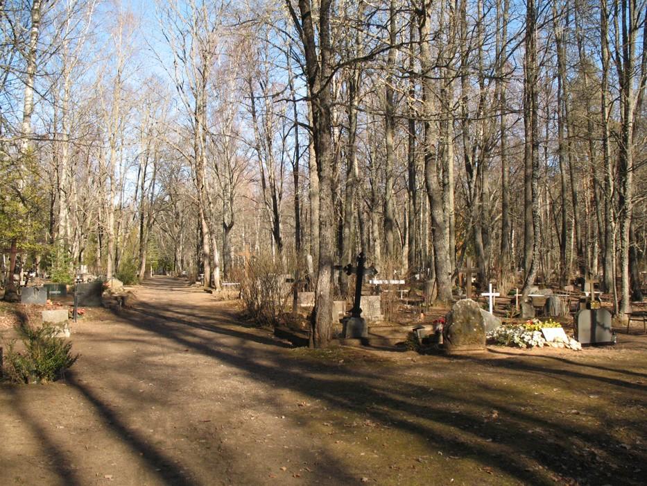 Vastseliina kalmistu. Foto Kersti Siim, 14.03.2014.