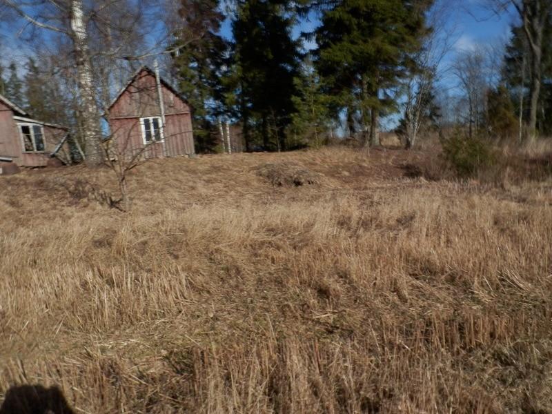 "Kalmistu ""Kajaku kalm"" reg nr 13292 idapoolne ots. Foto: Anne Kivi, 14.03.2014."