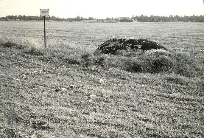 Kultusekivi - läänest. Foto: E. Väljal, 16.05.1984.
