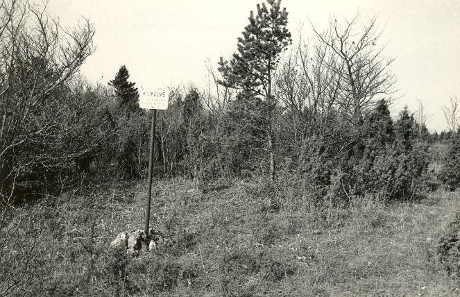 Kivikalme - kirdest. Foto: E. Väljal, 06.05.1983.