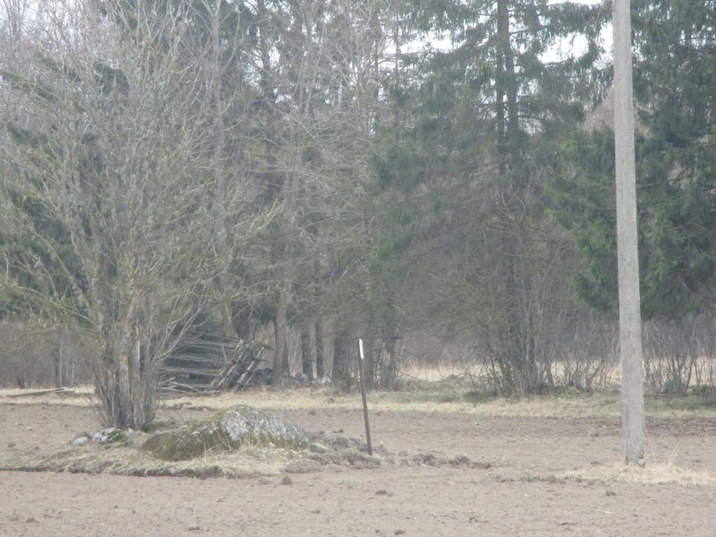 Lohukivi reg nr 11936, vaade loodest. Foto: K. Klandorf, 03.04.2014.