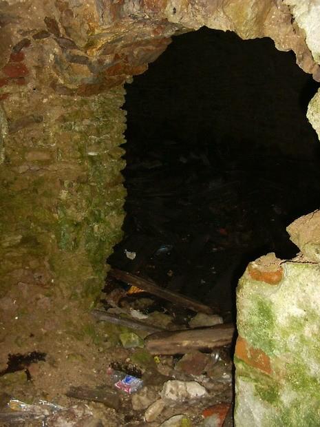 Vinni mõisa jääkelder , lagunenud sissepääs  Autor Anne Kaldam  Kuupäev  13.07.2005