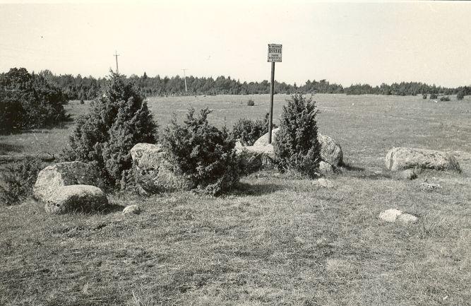 Kultusekivid - kirdest. Foto: E. Väljal, 06.05.1983.