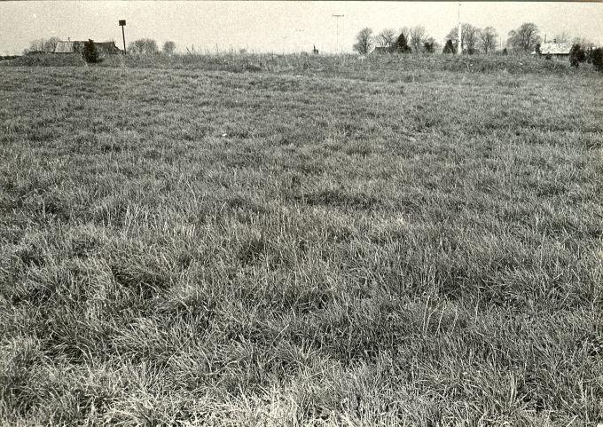 Kalmistu - idast. Foto: E. Väljal, 15.05.1984.