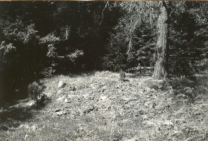 Kivikalme - kagust. Foto: E. Väljal, 15.05.1984.