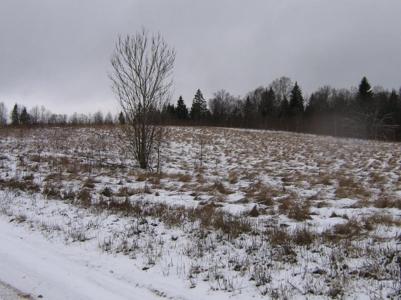 Vaade idast  Autor Ulla Kadakas  Kuupäev  29.02.2008