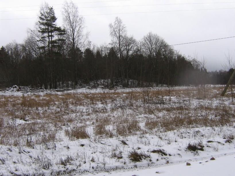 Vaade loodest tee pealt. Foto: Ulla Kadakas, 29.02.2008.