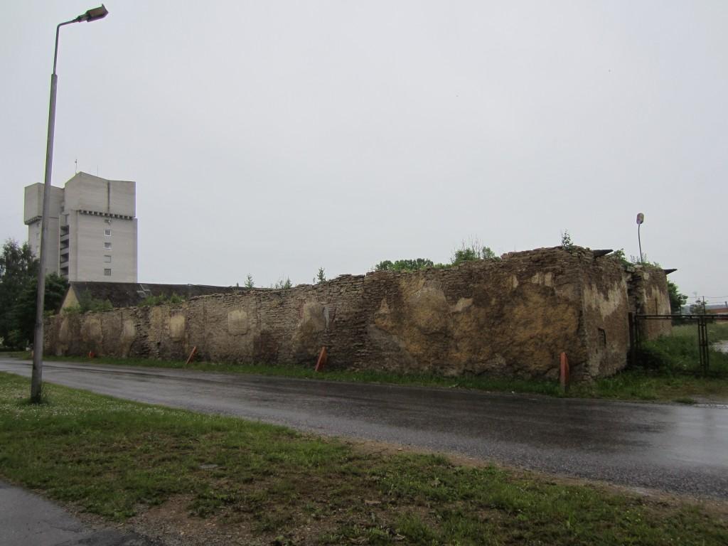 16002 Vinni mõisa tall, vaade tänavalt, säilinud on varemed 12.06.2014 Anne Kaldam