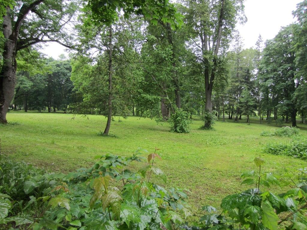 Vinni mõisa park Foto: Anne Kaldam 12.06.2014