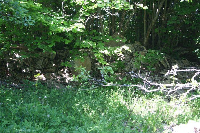 Vaade kalmele kagu suunast, esiplaanil naha valli lükatud lahtised kivid. 11.06.2014. A. Rudi