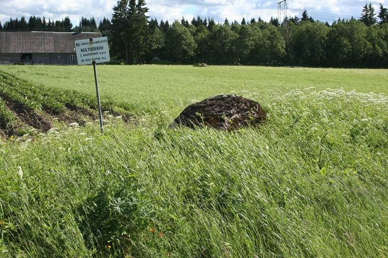 Vaade kivile Tõdva-Nabala teelt. 17.06.2014. A. Rudi