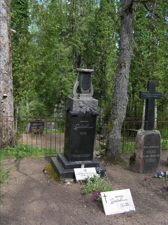 Viltu vajunud Evald Malteneki hauatähis  Autor Martti Veldi  Kuupäev  13.05.2008