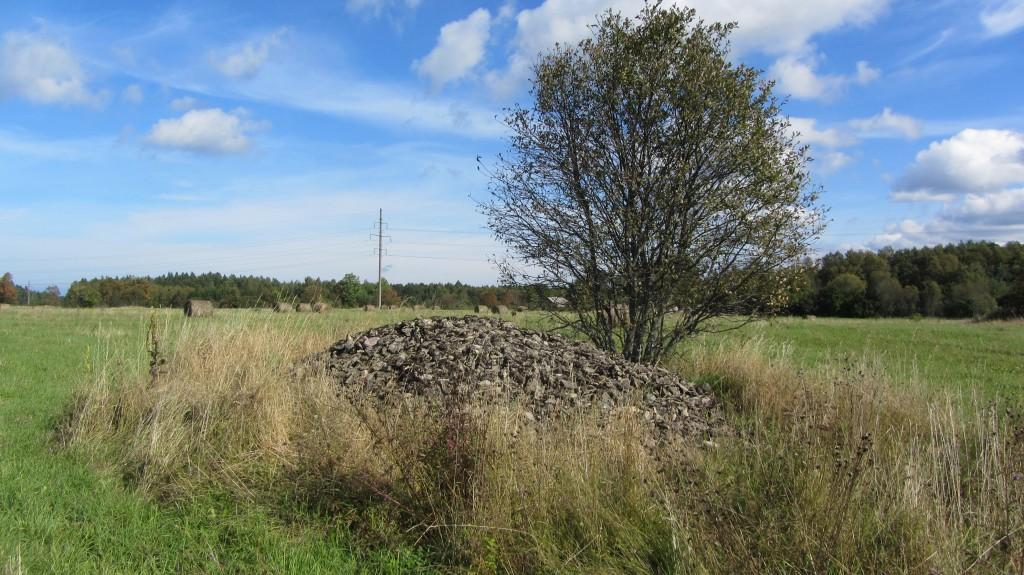 Kivikalme reg nr 10606. Foto: Ingmar Noorlaid, 19.09.2014.