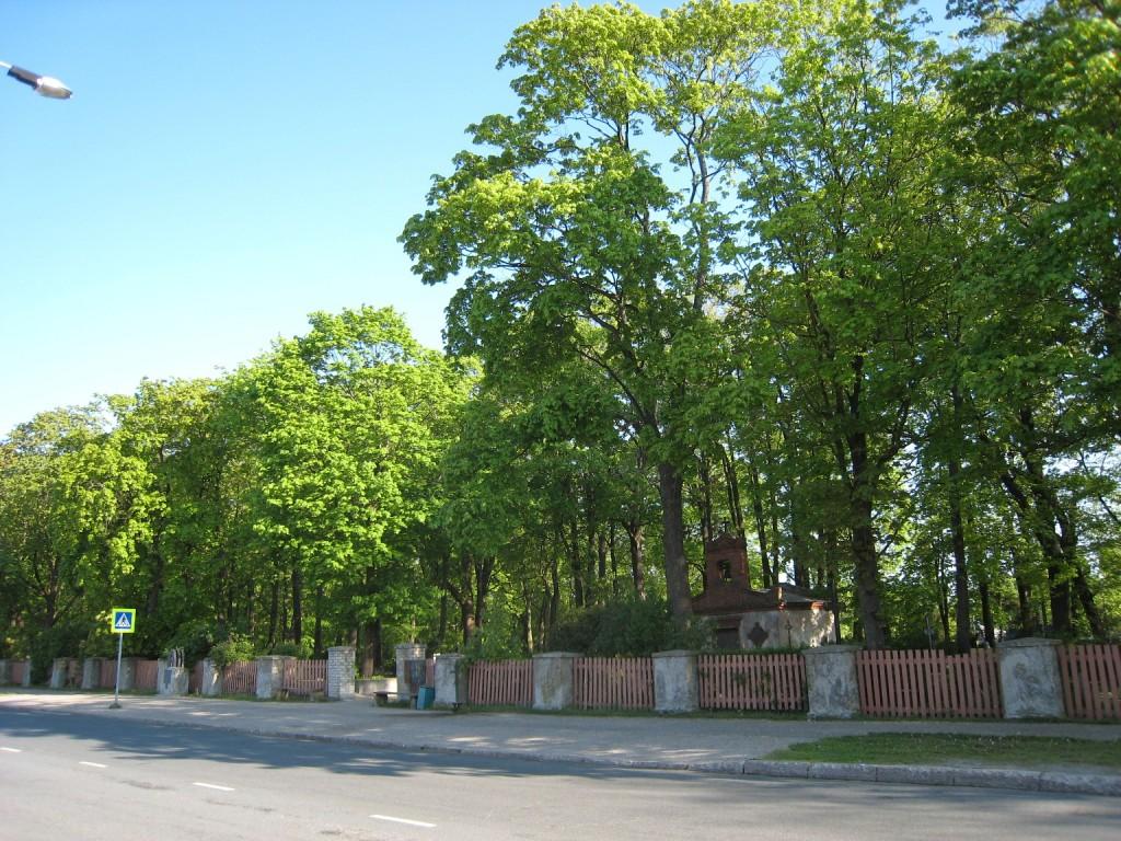 Vaade Vana-Pärnu kalmistule  Autor Liina Hansen  Kuupäev  13.05.2008