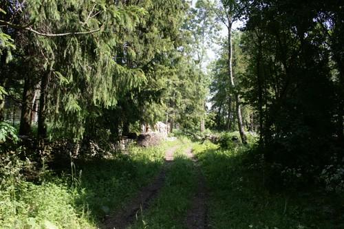 Hõbeda küla ida-läänesuunaline tänav. Foto: Mari Lõhmus, 19.06.2008.