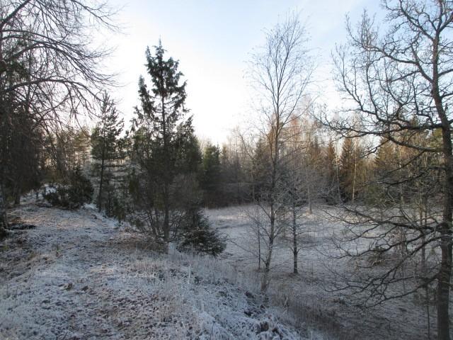 Läänevallil vaade edelasse. Foto: M. Mutso, 20.11.2014.
